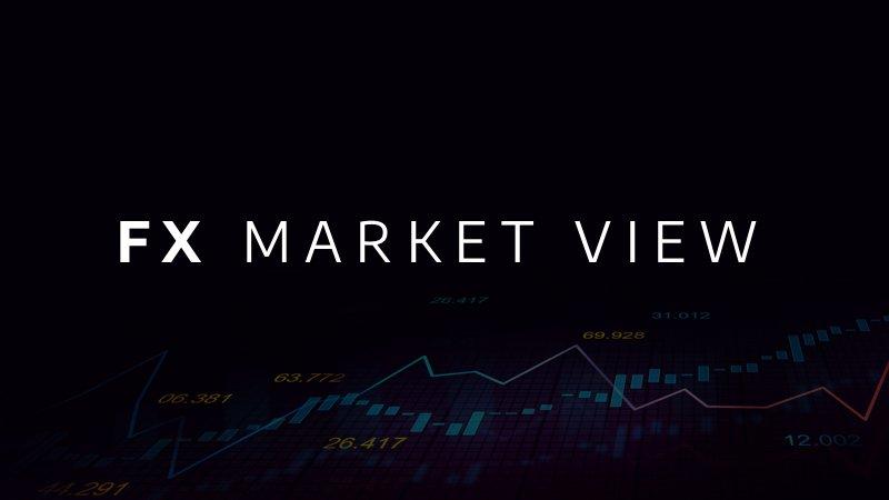 JPFS_FX_Market_View_01_080321